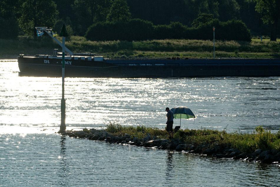 Es ist unklar, wie viele E-Scooter sich derzeit auf dem Grund des Rheins befinden.