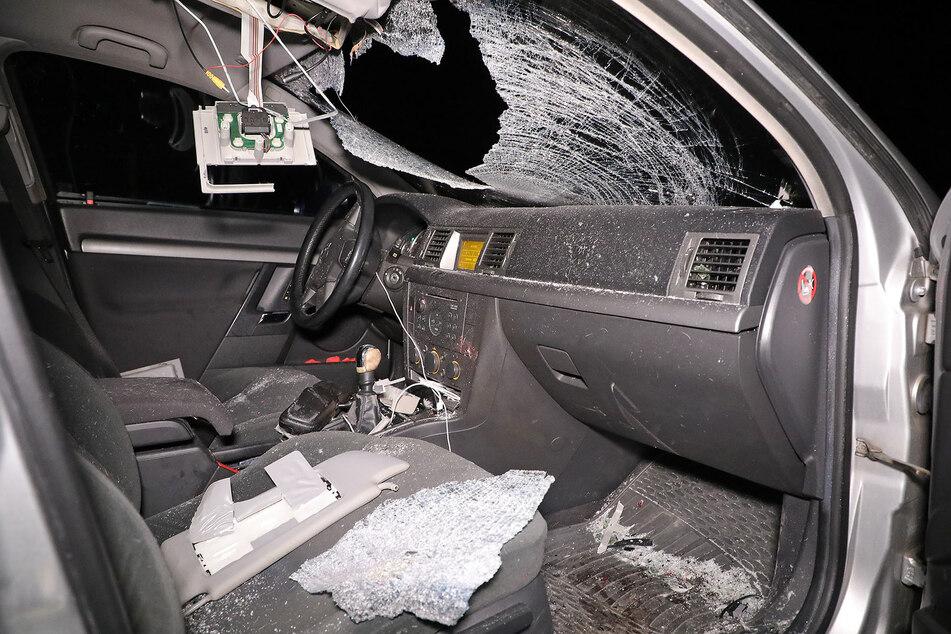 Schwan knallt durch Opel-Frontscheibe: Drei Verletzte, Vogel geköpft!