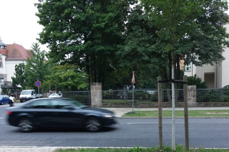 Die Tat geschah an der Tiergartenstraße in Dresden.