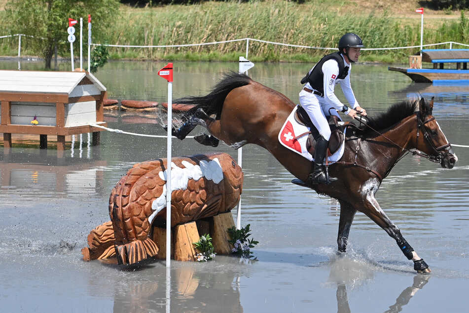 Horse euthanized at the Olympics after tragic competition injury
