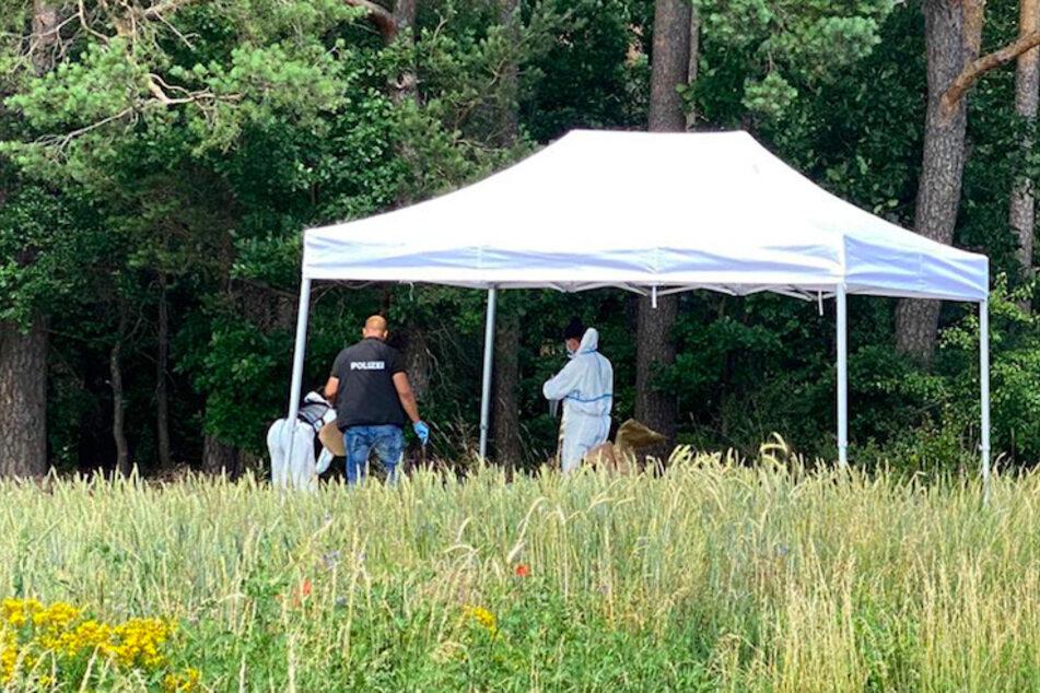 Frau (23) im Wald ermordet: Polizei hat tragischen Verdacht