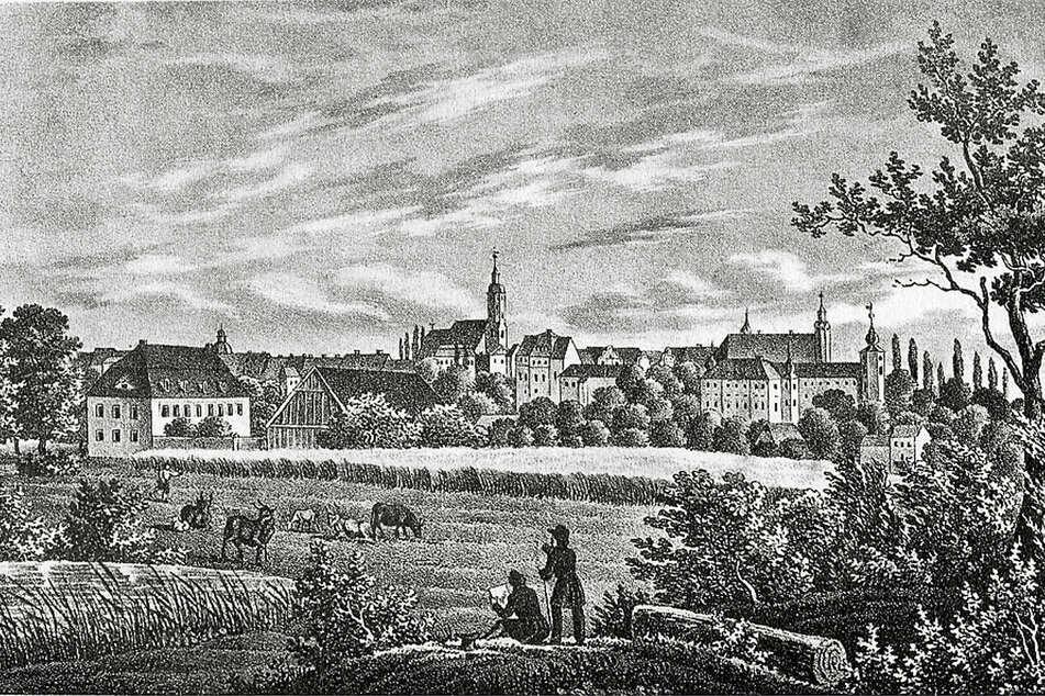 """Glauchau um 1850: Das slawische Gluch kann auch """"taubes, unfruchtbares Land"""" bedeuten."""