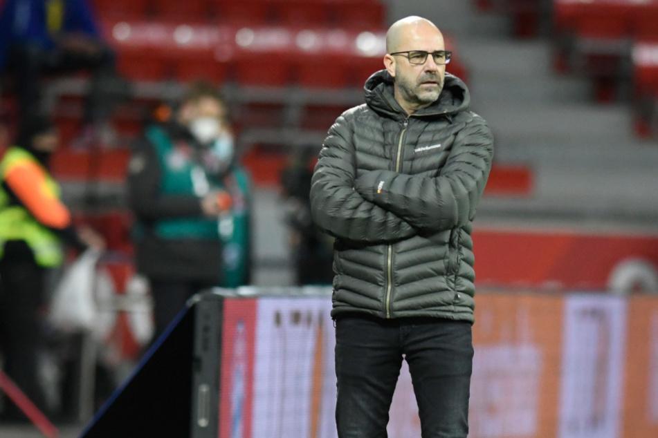 Kann Bayer-Coach Peter Bosz dem FC Bayern München gefährlich werden?