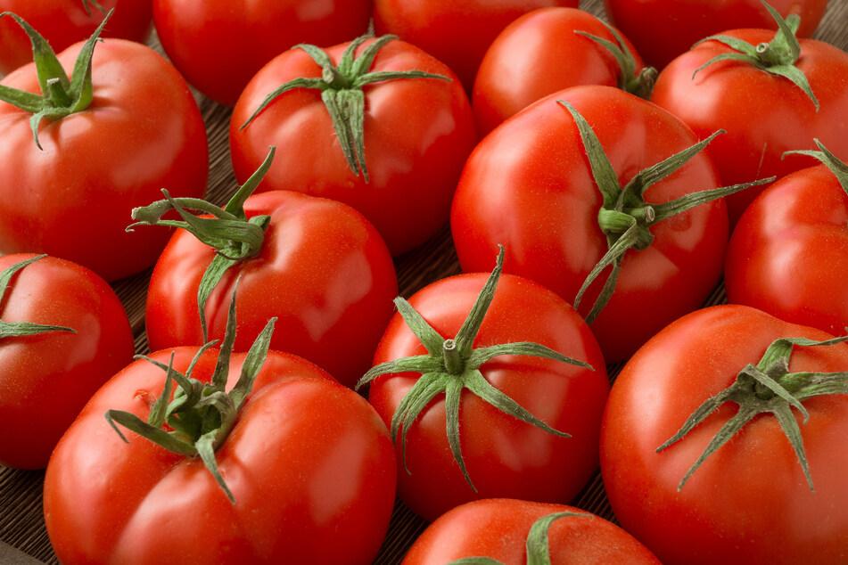 Bio scheint nicht gleich gleichbedeutend mit hoher Qualität zu sein, zeigt ein Test zu passierten Tomaten und den darin enthaltenen Schimmelpilzgiften. (Symbolbild)