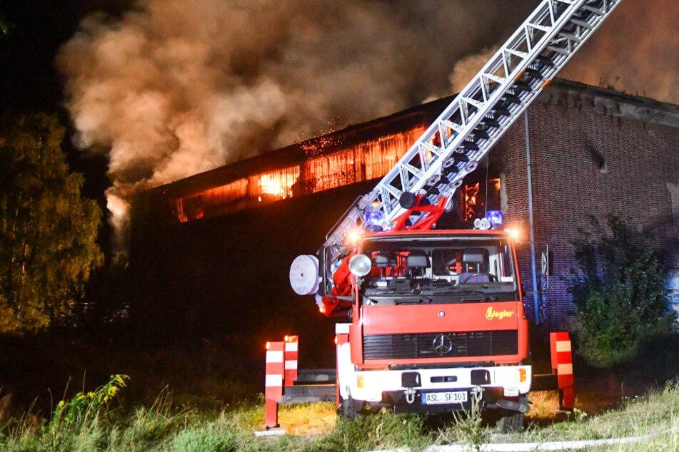 Riesige Halle brennt bei Großeinsatz lichterloh nieder