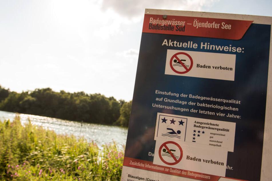 """Bereits im vergangenen Jahr wurde ein """"Baden verboten""""-Schild am Öjendorfer See aufgestellt."""