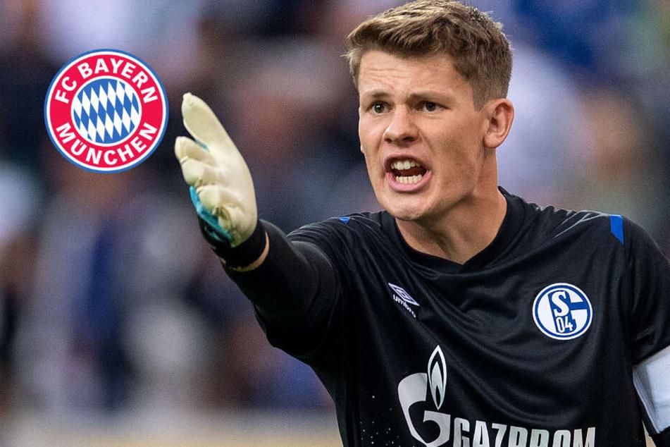 Jetzt ist es offiziell: Alexander Nübel wechselt zum FC Bayern München!