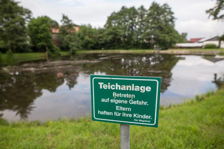 Die drei Kinder (5, 8 und 9) ertranken in diesem Löschwasserteich im hessischen Neukirchen.