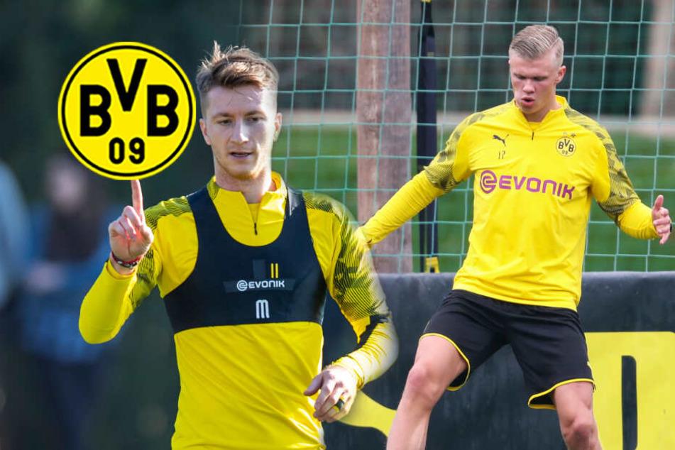 BVB: Haaland schweigt zu Ausstiegsklausel, Reus wieder fit