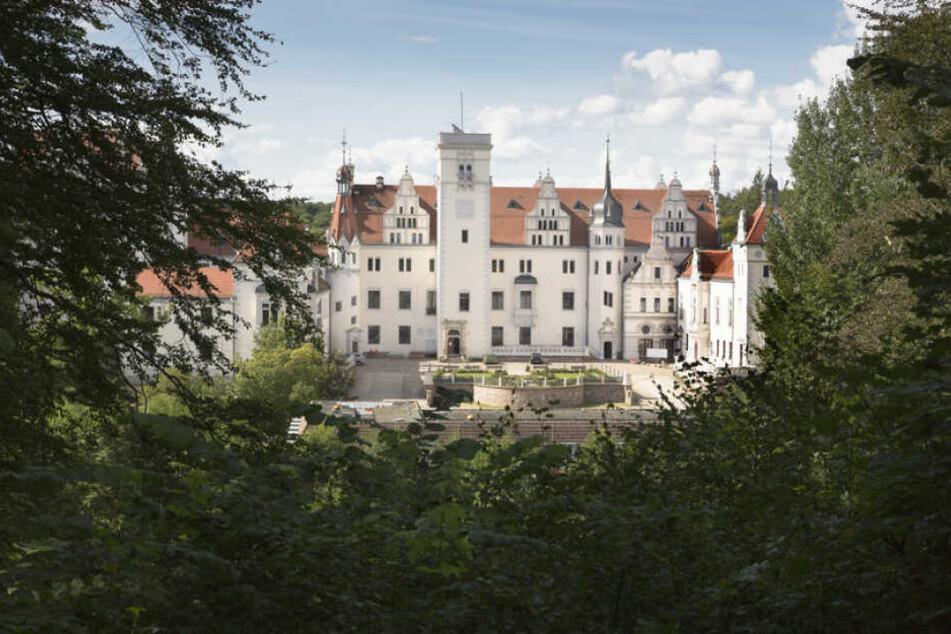 Brandenburg ist als Urlaubsort beliebt. (Symbolbild)