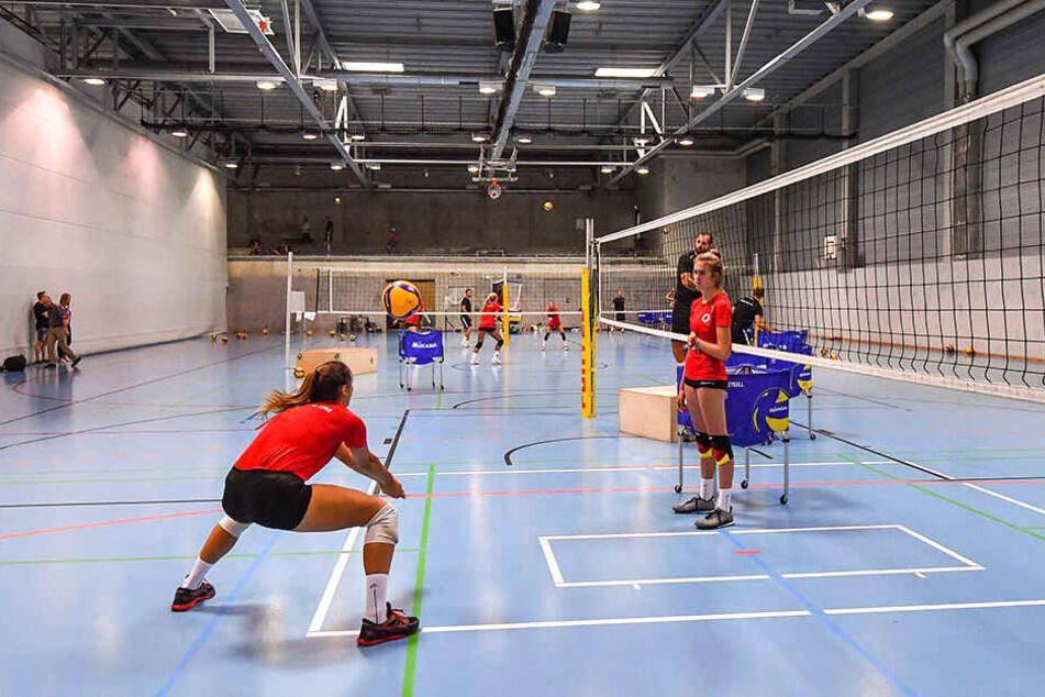 Die Ballspielhalle in der EnergieVerbund Arena ist für den DSC das neue Zuhause in der Saisonvorbereitung.