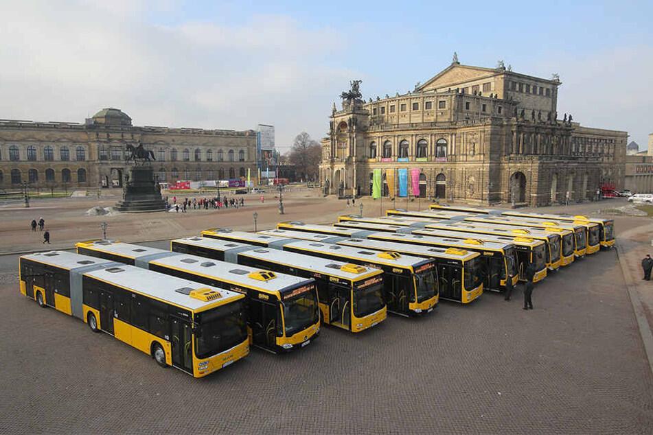 Fein aufgereiht präsentierten die DVB ihre neuen Mega-Busse vor der  Semperoper.