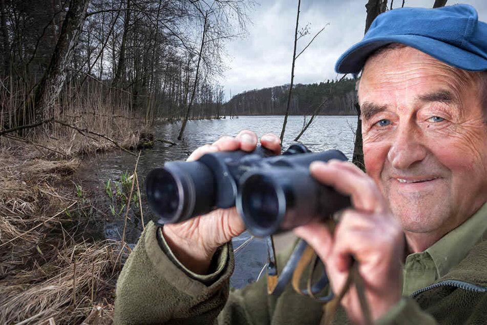 Für Udo Dettloff (76) ist der Höhepunkt eines jeden Kontrollgangs, wenn er einen Biber sieht. Allerdings kommen die nachtaktiven Tiere erst nach der Dämmerung raus.