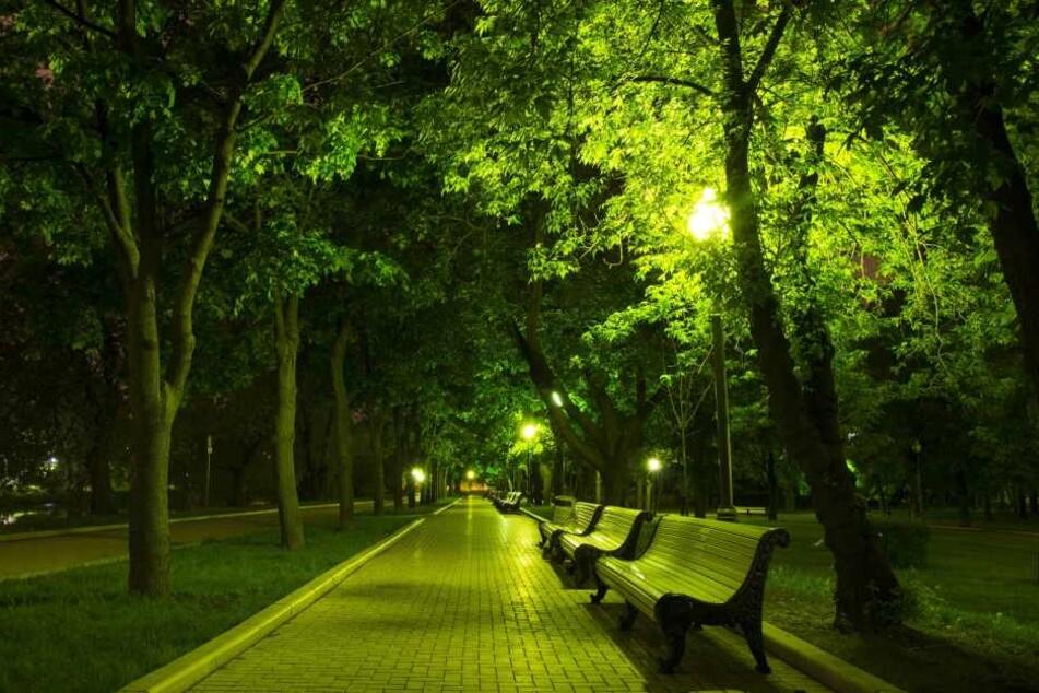 Der Angriff geschah am späten Mittwochabend in einem Plauener Park. (Symbolbild)