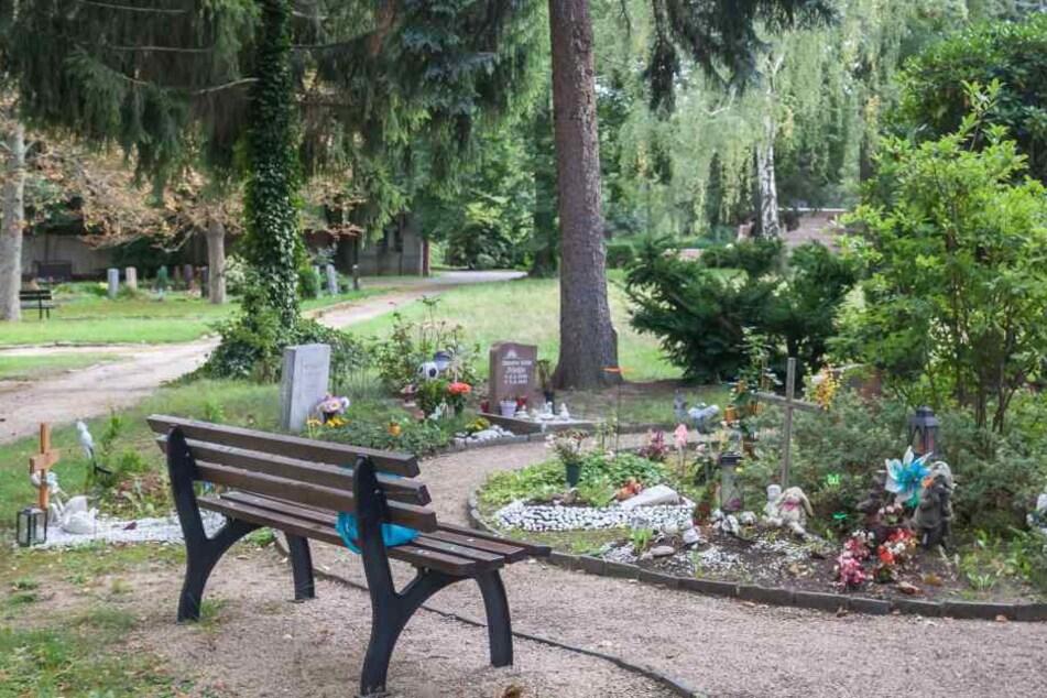 Von Kindergräbern auf dem Hauptfriedhof in Zwickau wurden schon oft Blumen, Schmuck und Spielzeug gestohlen.