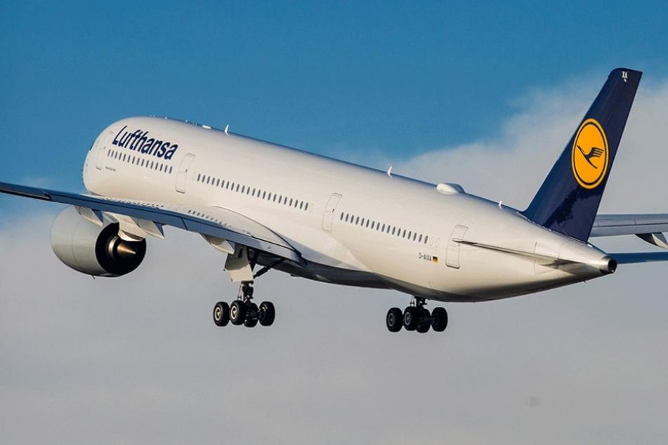 Der neue Airbus A350-900 ist