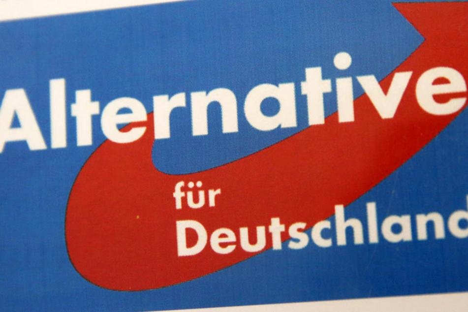 Umfragen sehen die AfD in Hessen bei 11 bis 14 Prozent.