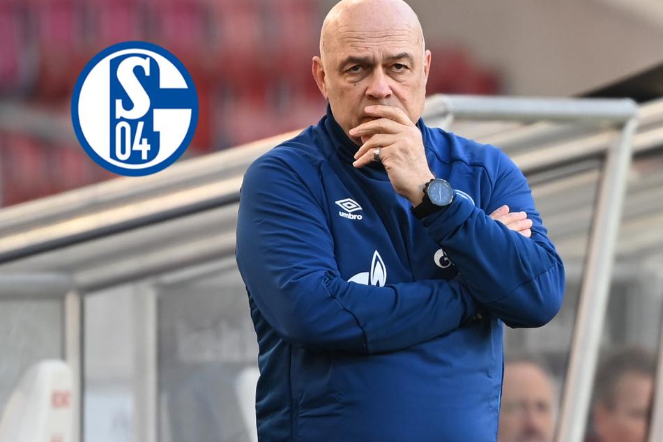 S04-Coach Gross offenbar vor dem Aus! Desolates Schalke mit Auflösungs-Erscheinungen