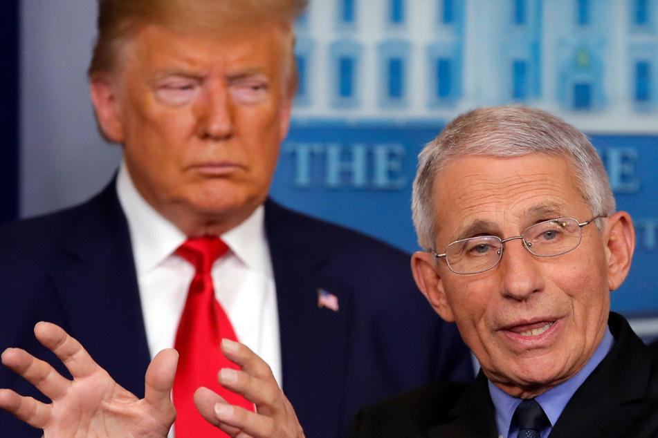 """Trump beschimpft Gesundheitsexperte Fauci als """"Katastrophe"""""""