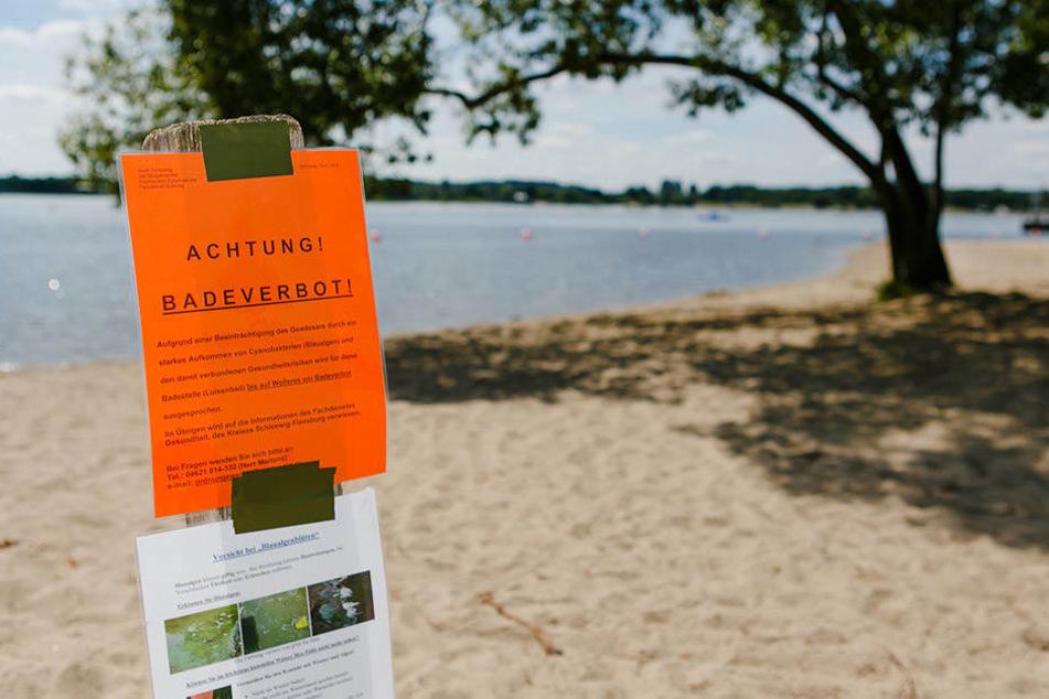 Baden verboten! Sachsens Trinkwasserspeicher sind für Schwimmer, Griller und Haustiere tabu.
