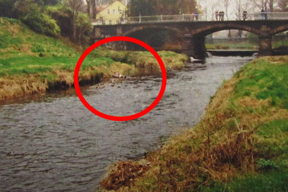 Am 27. Oktober 1996 wurde die Leiche von Hans-Georg B. am Ufer der Mandau entdeckt.