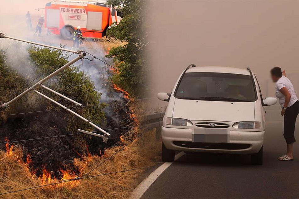 Großbrand nahe Dresden: Feld steht in Flammen