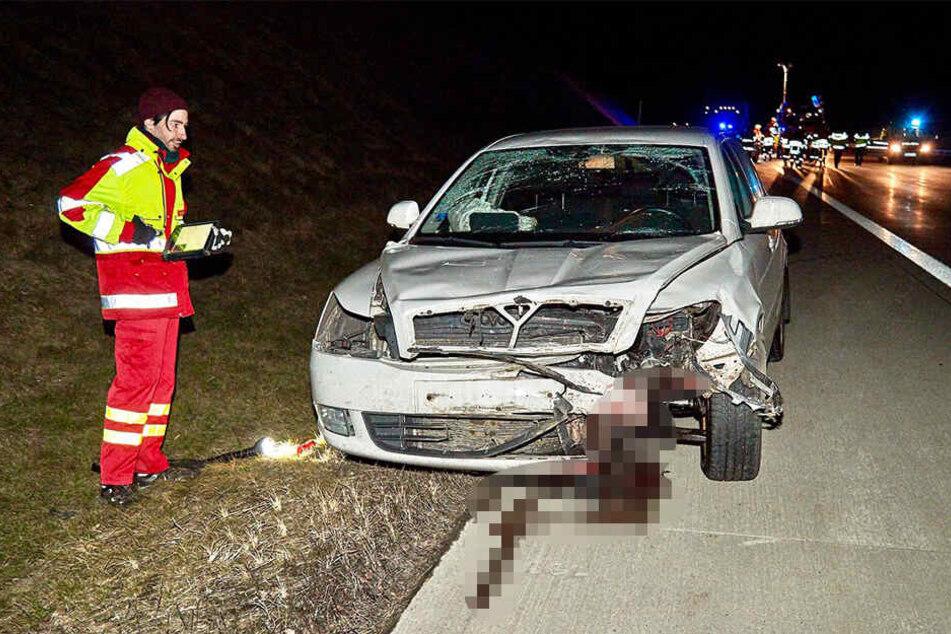 Wildschwein auf der A17: Skoda-Fahrer (30) kann nicht mehr ausweichen