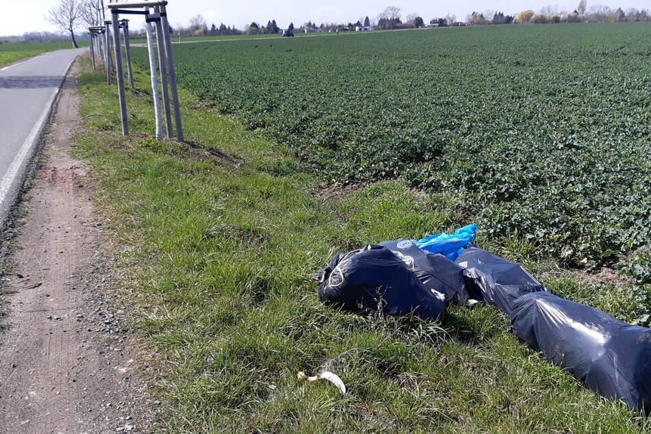 In Kleinpösna findet man ihn schon am Straßenrand: Illegal deponierter Müll. Gegen derartige Delikte will nun auch Leipzigs Stadtrat vorgehen.