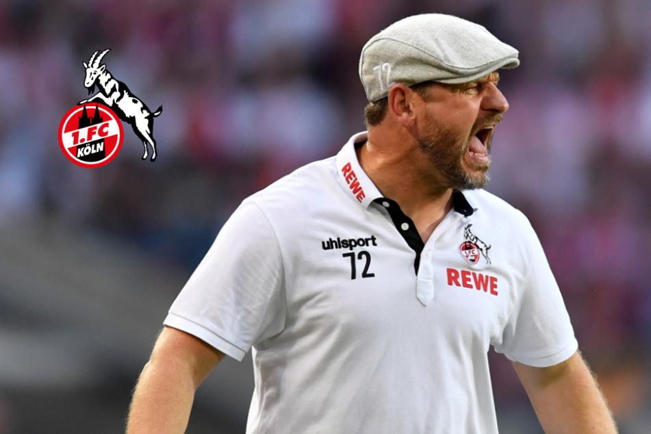 """FC-Trainer Baumgart mahnt trotz gutem Saison-Start: """"Unser erstes Ziel ist..."""""""