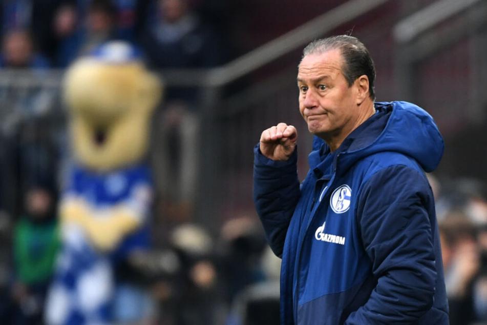 Wurde bei Weinzierls Ex-Club Schalke 04 als Feuerwehrmann bis zum Saisonende geholt: Trainer Huub Stevens.