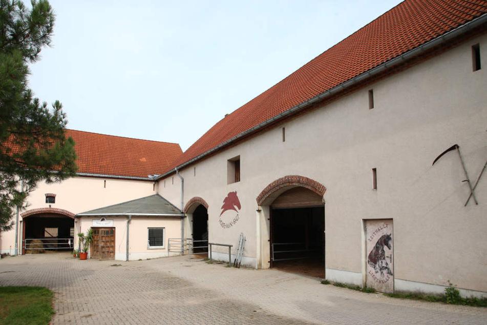 Auf diesem Gehöft in Bröhsen bei Grimma bildet Silke ihre Pferde nach der Methode von Pat Parelli aus.