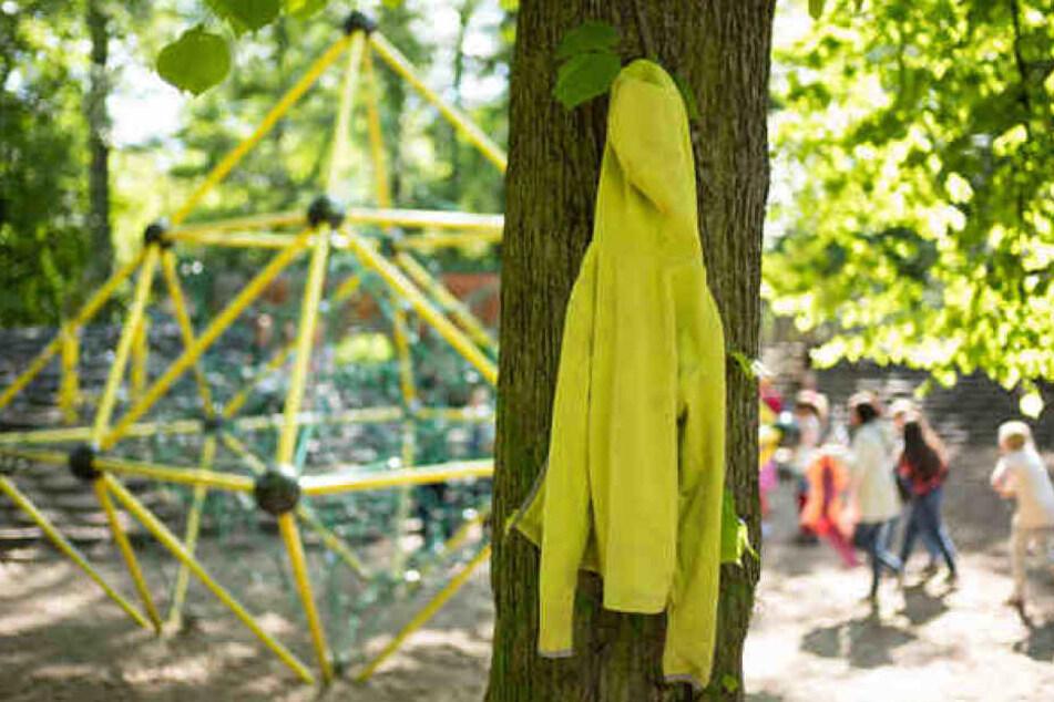 Statt eine grüne Wiese in der Eigenheimstraße zu bebauen, schlägt die SPD eine große Lösung an einem bestehenden Schulstandort vor. (Symbolbild)