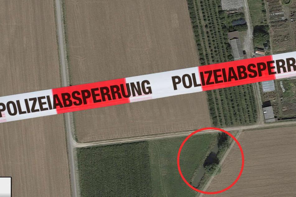 Neue Details! Leipziger Junge (1) fällt beim Drachensteigen in Weiher und stirbt