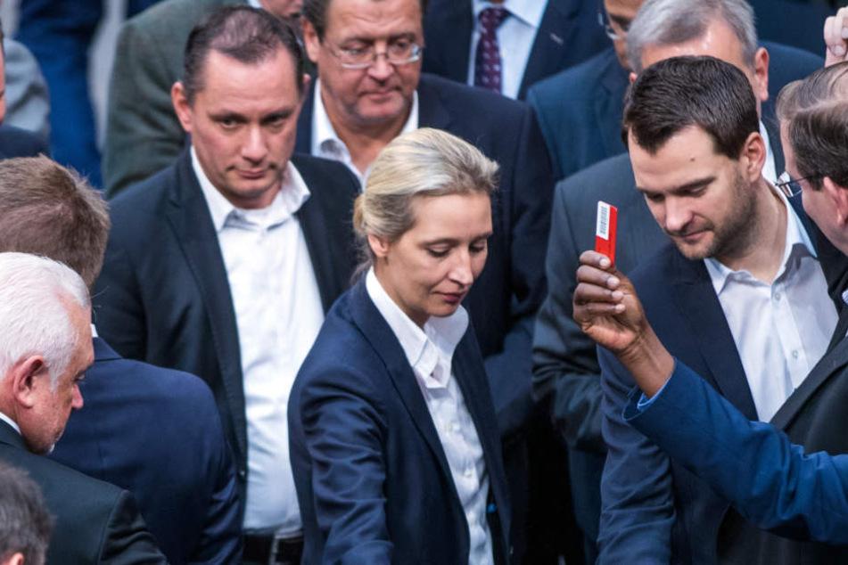 Wird von einigen Kollegen zum Rücktritt aufgefordert: AfD-Fraktionschefin Alice Weidel. (Symbolbild)