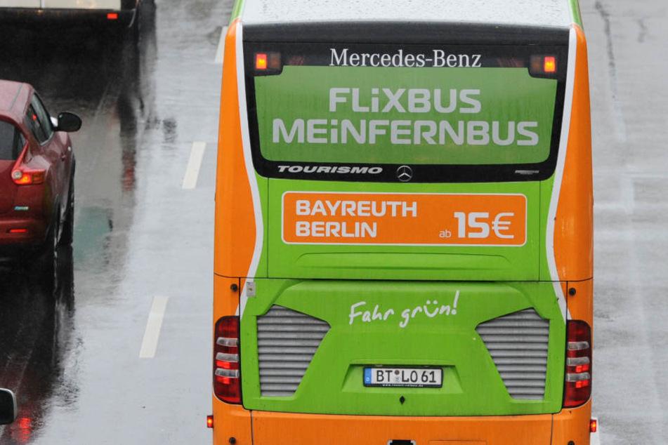Kampfansage! Tschechischer Konkurrent will Flixbus angreifen