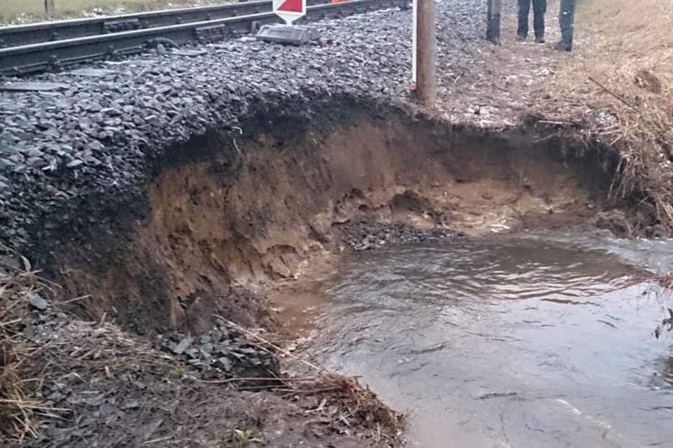 Hier war ein Biber am Werk - die Lößnitzgrundbahn muss pausieren.