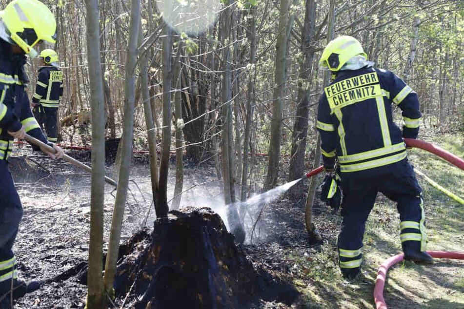 Die Feuerwehr konnte ein weiteres Ausbreiten der Flammen in Adelsberg verhindern.
