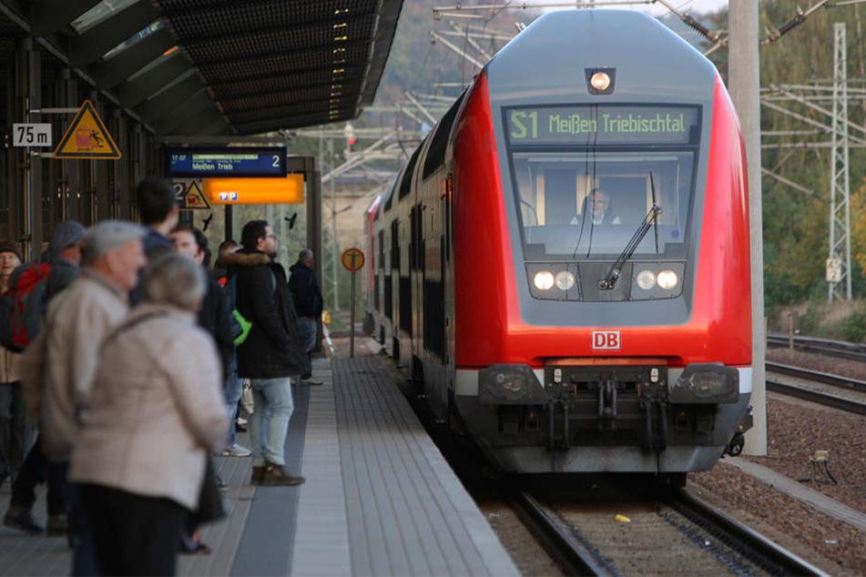 Aufgrund des Unfalls hatten viele S-Bahnen im Umkreis von Pirna Verspätung.
