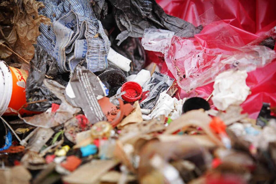 Insgesamt rund 10,5 Tonnen Müll und Unrat wurden weggeräumt.
