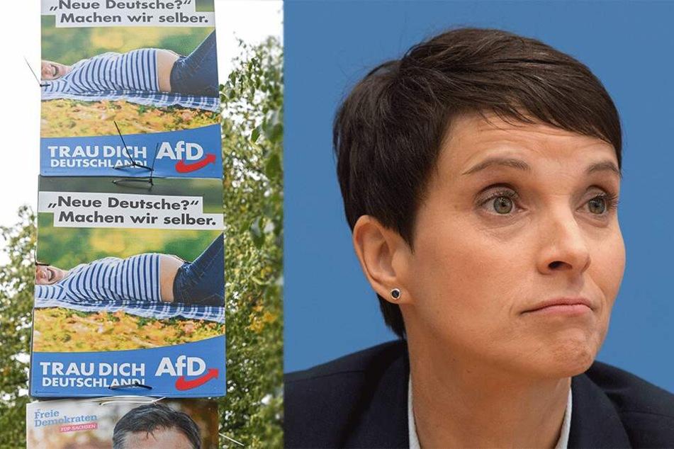 Resteverwertung bei der AfD: Partei klebt Plakate von Ex-Chefin Petry