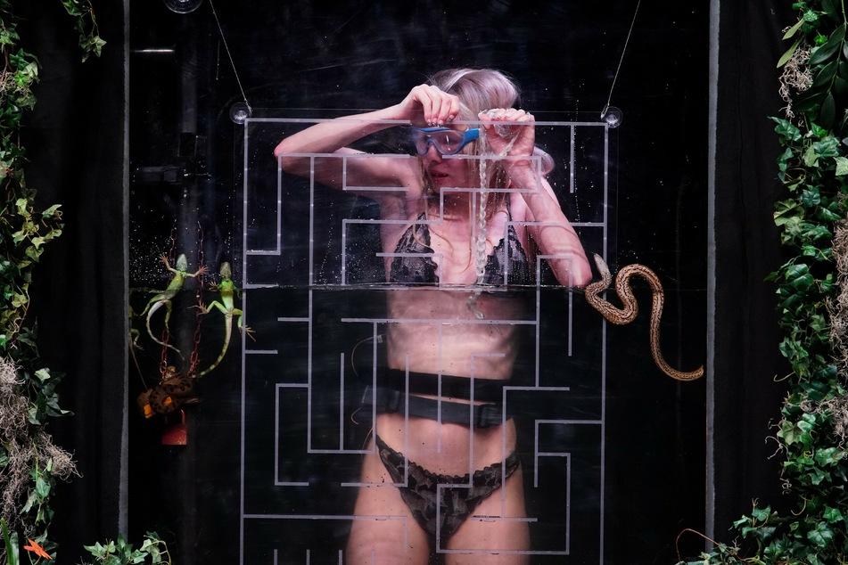 """GNTM-Model Zoe Saip (21) in einem der mit Tieren bestückten Wassertanks in der ersten Dschungelprüfung """"Tierischer Einlauf""""."""