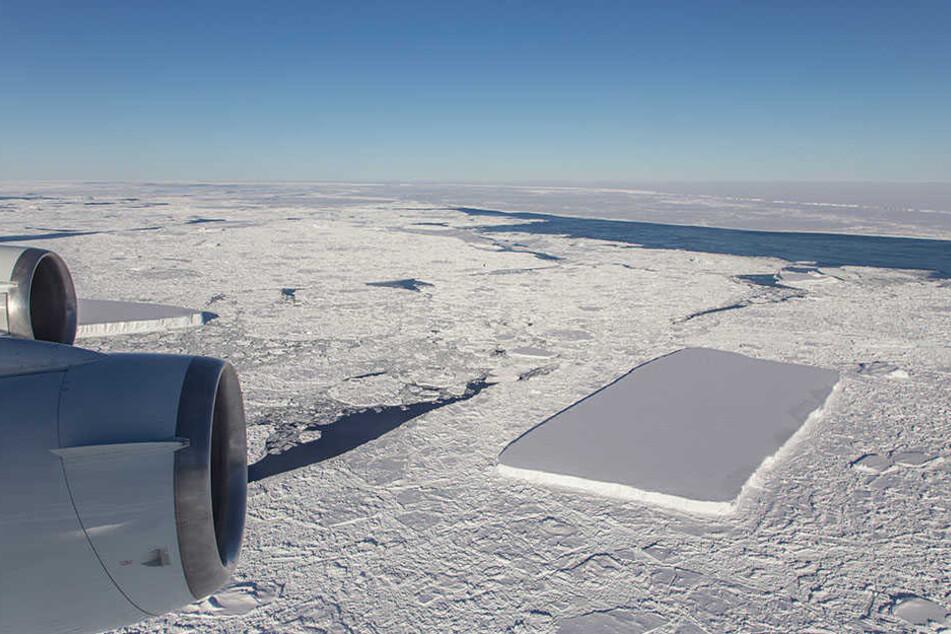 Antarktis - Rechteckiger Eisberg treibt in der Antarktis
