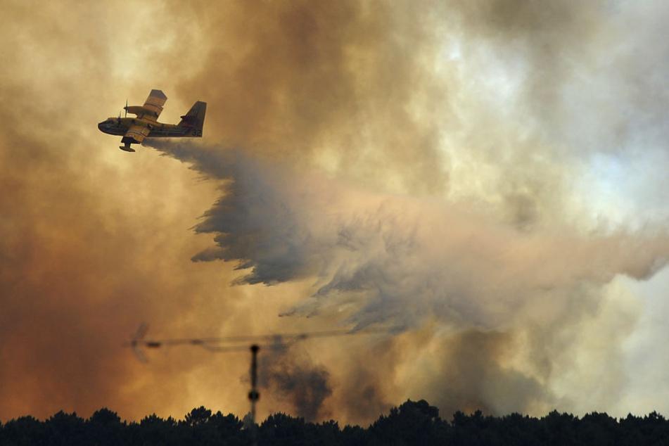 Ein Waldbrand in Portgual mit mindestens 62 Toten hat eine Spur der Zerstörung hinterlassen.