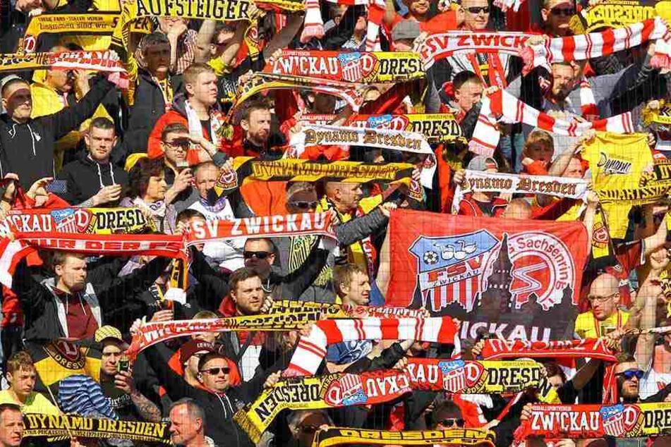 Schiedlich friedlich nebeneinander. Gemeinsam standen Dynamo und Zwickau-Fans beim Benefizspiel im Fanblock.