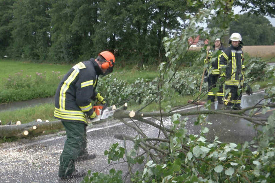 In OWL hat es vor allem die Bäume und Bahnstrecken getroffen.