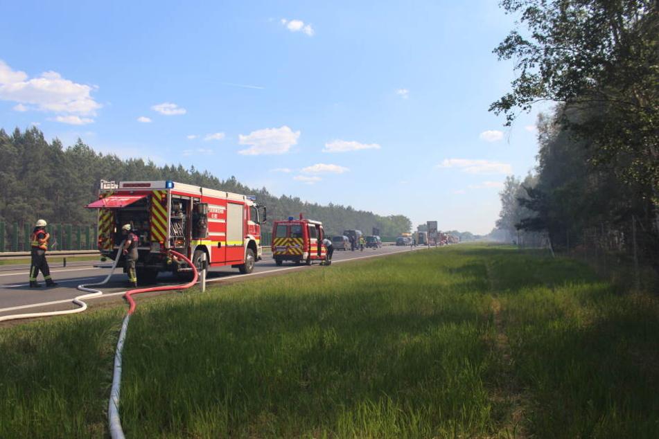 Bei Falkensee brennen derzeit etwa 50 Hektar Wald.