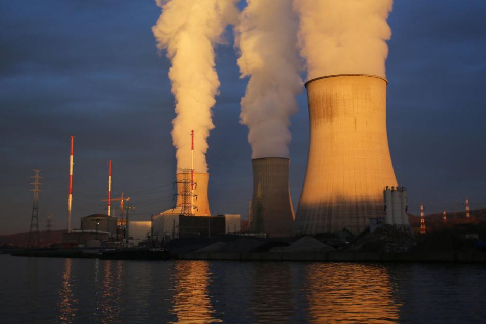 """Den Energiekonzernen steht wegen des beschleunigten Atomausstiegs nach der Katastrophe von Fukushima eine """"angemessene"""" Entschädigung zu."""