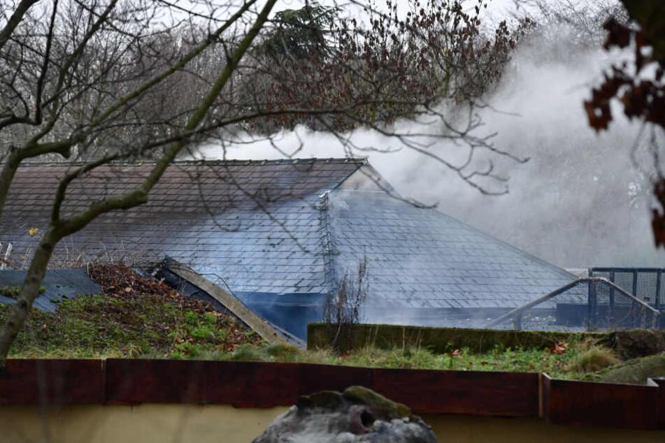 Acht Mitarbeiter wurden bei dem Brand verletzt.
