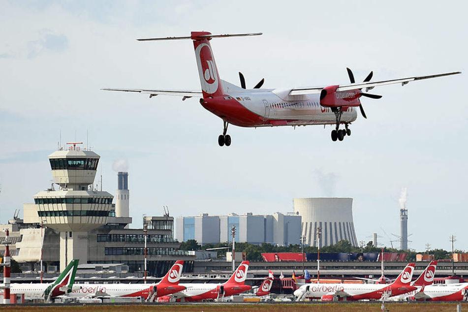 Eine Air-Berlin-Maschine landet auf dem Flughafen Tegel in Berlin. (Symbolbild)