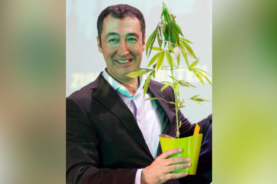 Cem Özdemir: Bekam nach einer Rede im Jahr 2014 vom Sprecher der Landesarbeitsgemeinschaft Drogenpolitik eine Hanfpflanze geschenkt.